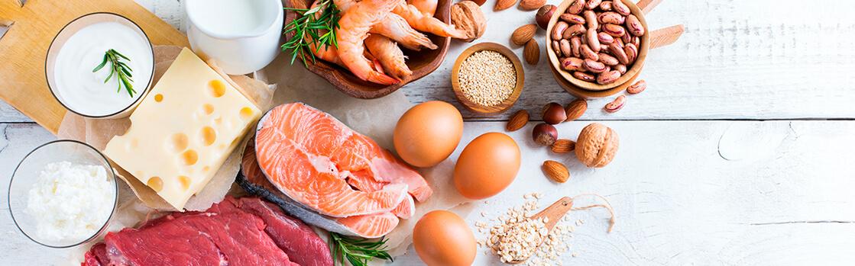 la proteina y sus multiples beneficios