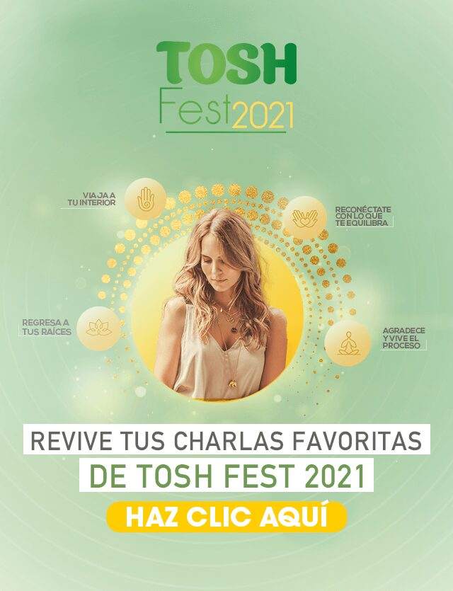 banner-mobile-pos-toshfest-tosh